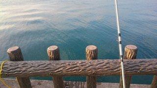 20160131サゴシ釣り.JPG