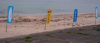 20160619海浜清掃1.jpg