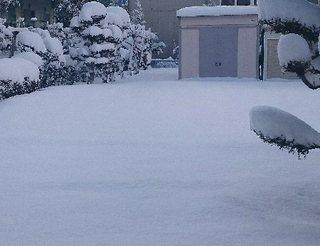 20180130雪.jpg