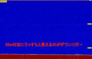 20190407ダウンリガーの魚探反応.jpg